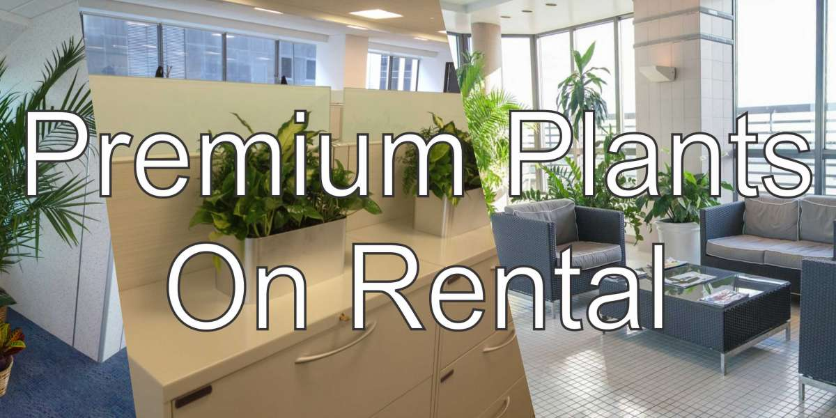 Plants on Rent/Hire Services in Delhi-NCR