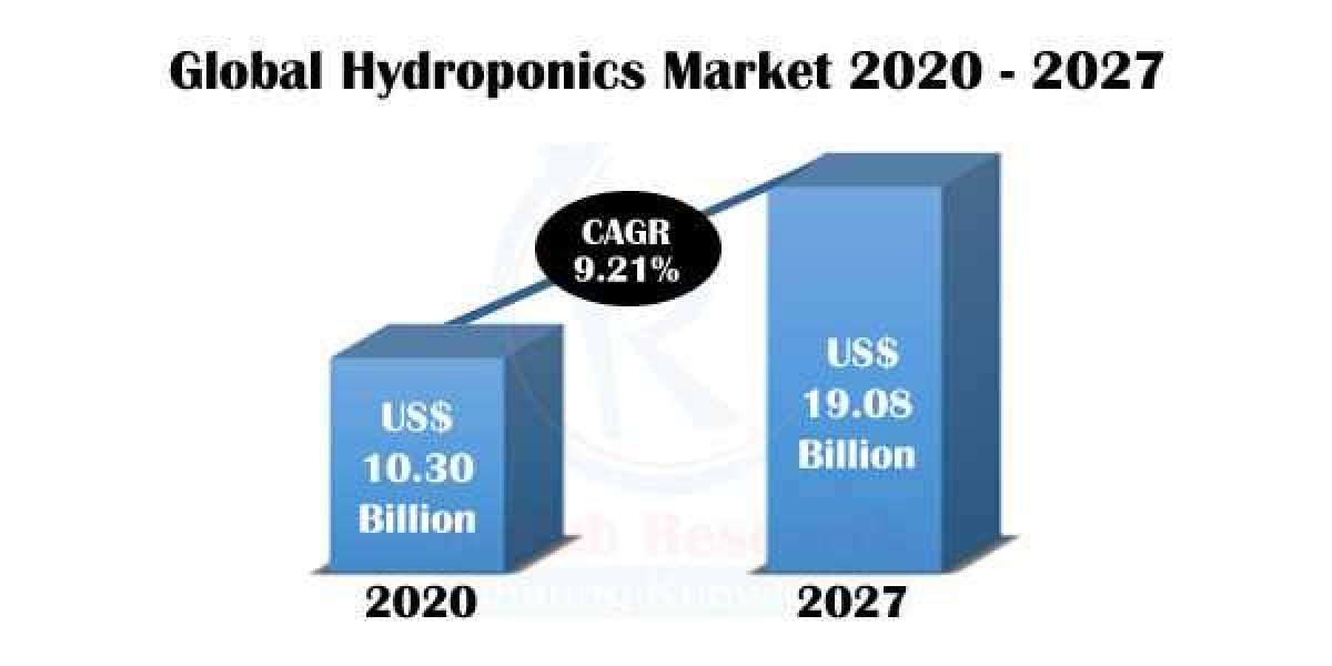 Hydroponics Market, Industry Trends by Type, Companies, Forecast by 2027